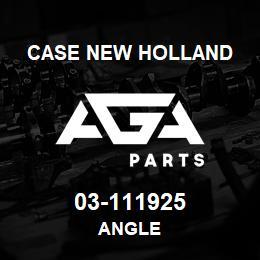 03-111925 Case New Holland ANGLE | AGA Parts